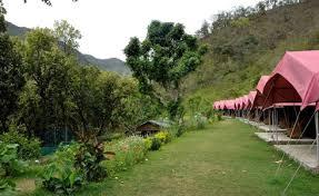 jungle-camp